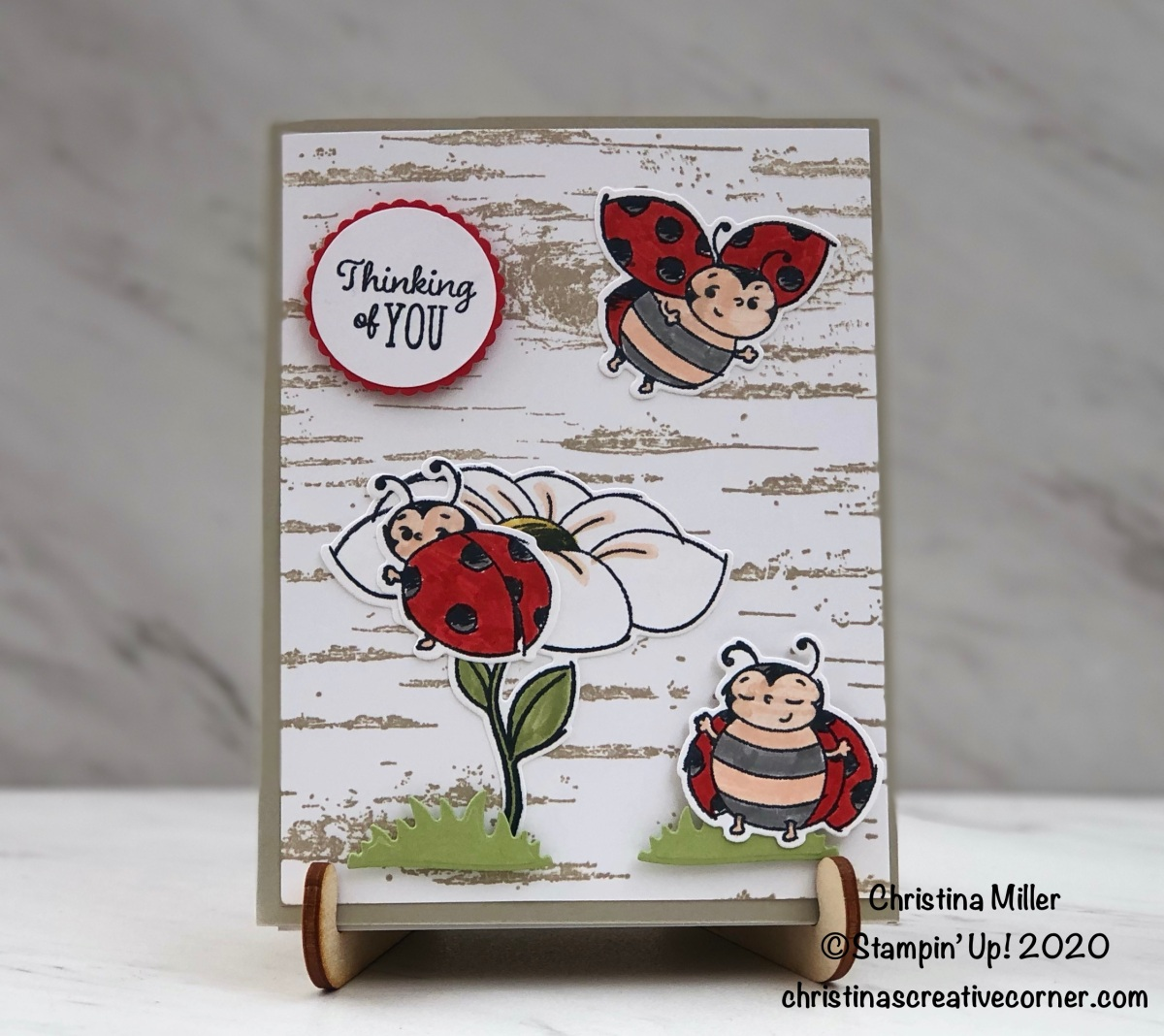 Sweet Little Ladybug Card