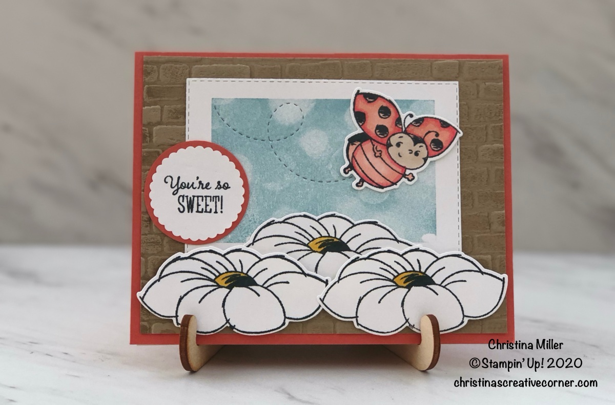 Sweet Little Ladybug Thank You card!
